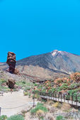 Park Canadas del Teide — Stock Photo