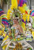 Santa Cruz de Tenerife Carnival 2014 — Stock Photo