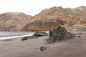 Black sand volcanic beach. Tenerife Island — Stock fotografie