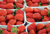 Punnets of strawberries — Stock Photo
