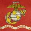 Stock Photo: Grunge US Marine Corps flag