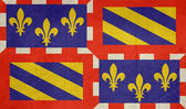 Grunge Bourgogne flag — Stock Photo