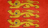 Grunge Haute-Normandie flag — Stock Photo