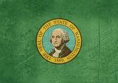 Grunge Washington state flag — Stock Photo