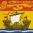 Grunge New Brunswick state flag — Stock Photo
