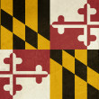 Grunge Maryland state flag - Stock Photo