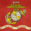 Stock Photo: Grunge United States Marine Corps