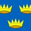 Province of Munster flag — Foto de Stock