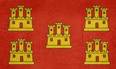 Grunge Poitou-Charentes flag — Stock Photo
