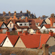 Red tiled houses in city — Stock Photo