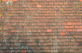 Old red tiled roof — Stock Photo