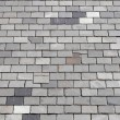 Gray tiled roof — Photo