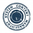 Content Management System concept stamp — Stockfoto