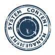 Content Management System concept stamp — Stock Photo