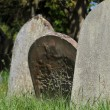 Old graves in English cemetery — Foto Stock