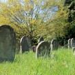 Stock Photo: Old graves in cemetery