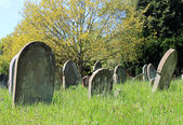 Old graves in cemetery — Stockfoto