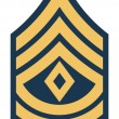 American First Sergeant insignia rank badge — Стоковая фотография