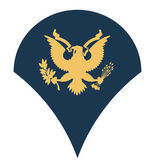 American army specialist insignia — Stock Photo