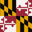 Maryland state flag on brick wall — Stock Photo