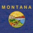 Montana State flag on brick wall — Stock Photo