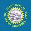 South Dakotstate flag on brick wall — Stock Photo #37018653