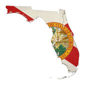 State of Florida grunge flag map — Stock Photo