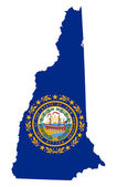State of New Hampshire flag map — Foto de Stock