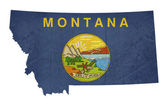 Grunge state of Montana flag map — Stock Photo