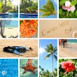 Royalty-Free Stock Photo: Tropical collage. Exotic travel.