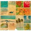 Tropical collage on a piece of old paper, illustration — Stock Photo #12851790