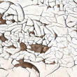 White cracked paint — Stock Photo