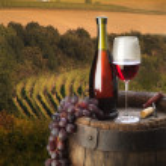 natureza morta com vinho tinto — Foto Stock