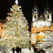 Stock Photo: Winter prague