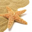 Stock Photo: Sand and seastar border