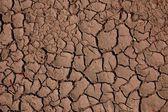 Suelo seco — Foto de Stock