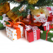 Red gift boxes under Christmas tree - Stock Photo