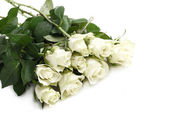 Bunch of white roses — Stock Photo