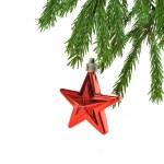 stella di Natale rossa — Foto Stock #2758361