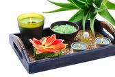 Aloe spa — Stock Photo