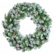 Christmas wreath — Stock Photo #35427543