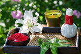 Spa in garden — Stock Photo