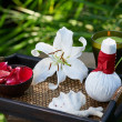 Spa in garden — Stock Photo