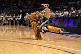 Penn State's mascot the Nittany Lion entertains — Stock Photo
