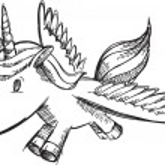 Sketch Doodle Unicorn Pony Vector — Stock Vector