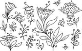 Doodle schets bloemen lente vector set — Stockvector