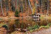 House near the lake — Stock Photo