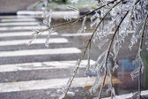 City streets after freezing. — Stock Photo