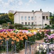 Stock Photo: Botanical Gardens, Yalta