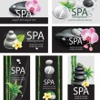 Set of cards for SPA salon — Stock Vector
